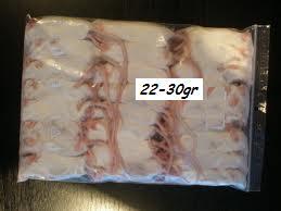 frozen miceadult